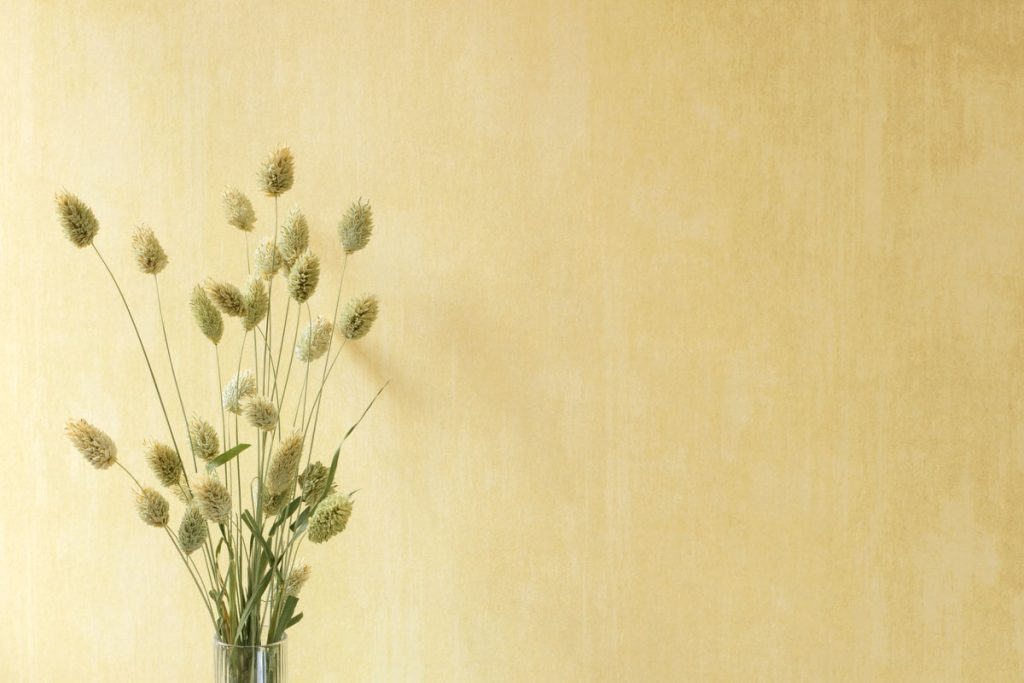 Wandbeschichtung